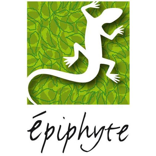 Épiphyte